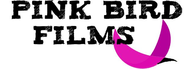 PinkBird.pl zdjęcia z drona Gdańsk Gdynia Trójmiasto filmy z drona Gdańsk